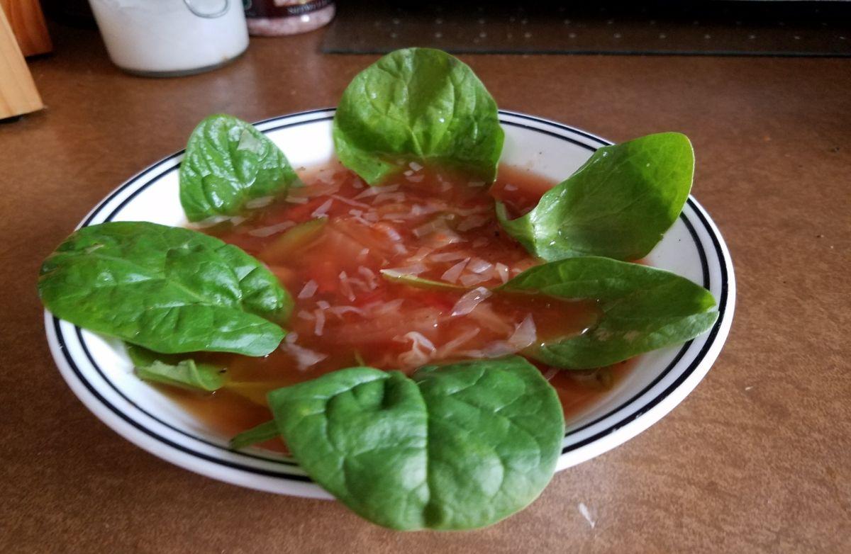 No Carb Vegetable Soup Recipes Sparkrecipes