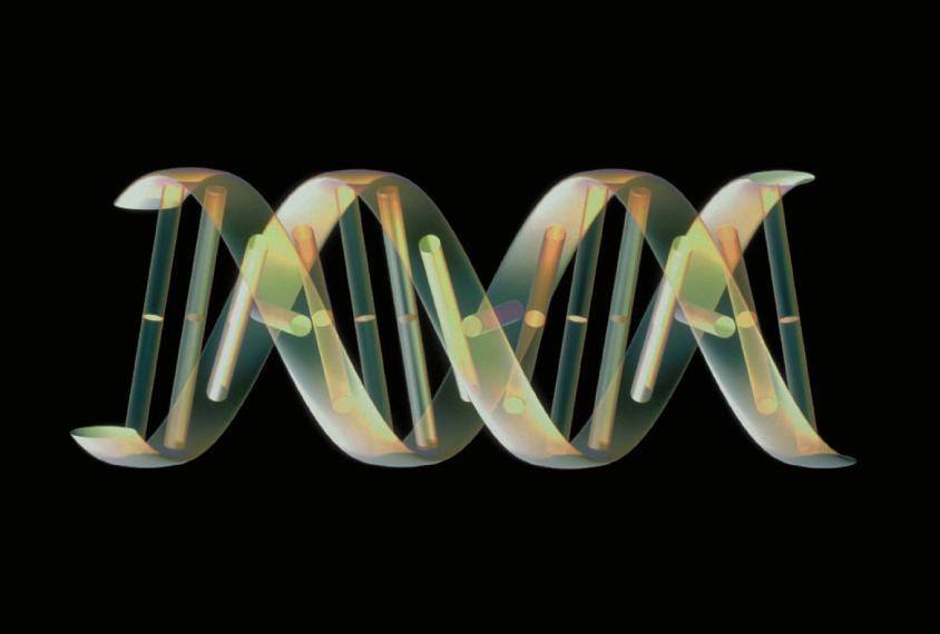 a virus shuttling between cells