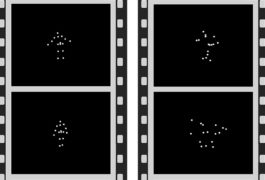 Seeing spots: The brain responds differently to animations of dots moving in random patterns (right) compared with ones that resemble a person moving (left).
