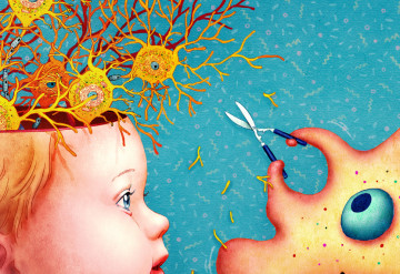 The Brains Secret Gardeners >> The Immune System In Autism Spectrum Autism Research News