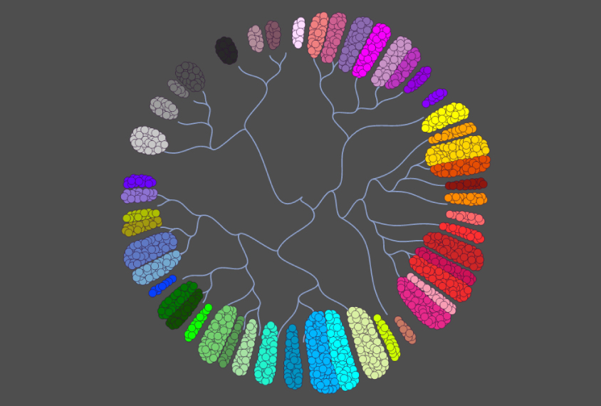 Sequencing approach bares large variety of brain cell types ...