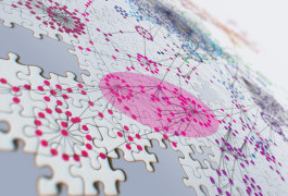 Genetic puzzle: Understanding how pieces of DNA work together to shape gene expression could provide clues to autism. Valdo Peixoto and Daniel Marbach