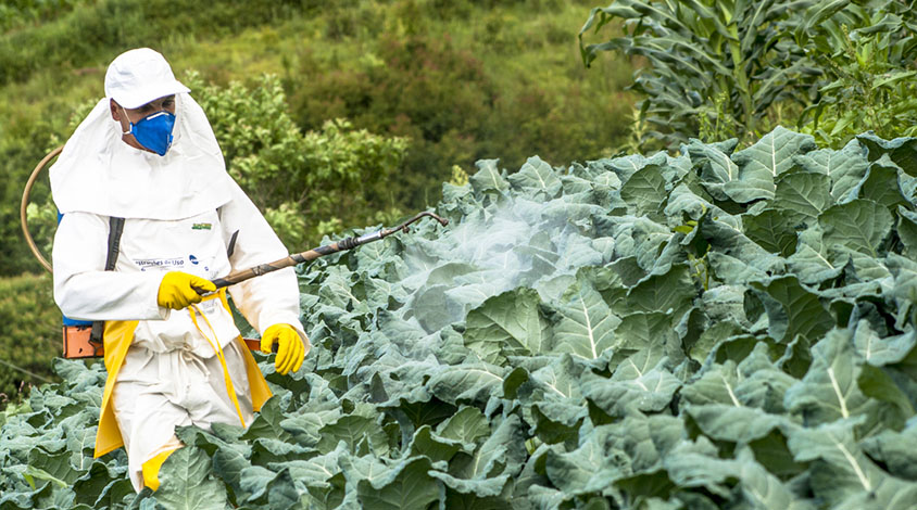 Pesticide Effect On Cells May Resemble >> Pesticide Effect On Cells May Resemble Signs Of Autism
