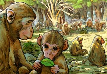 Illustration by  Kyungeun Park
