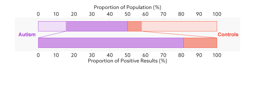 Positive prediction: In this sample (upper bar), half of the people have autism (purple). Of those who have tested positive for autism (dark sections), 81 percent actually have autism (bottom bar). This is the test's positive predictive value.