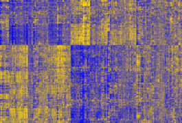 Telling tapestry: The expression of hundreds of genes is either elevated (yellow) or depressed (blue) in people with schizophrenia.