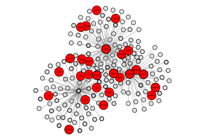 Control panel: The constellation of proteins at neuronal junctions that dampen brain activity include many associated with autism (red circles).