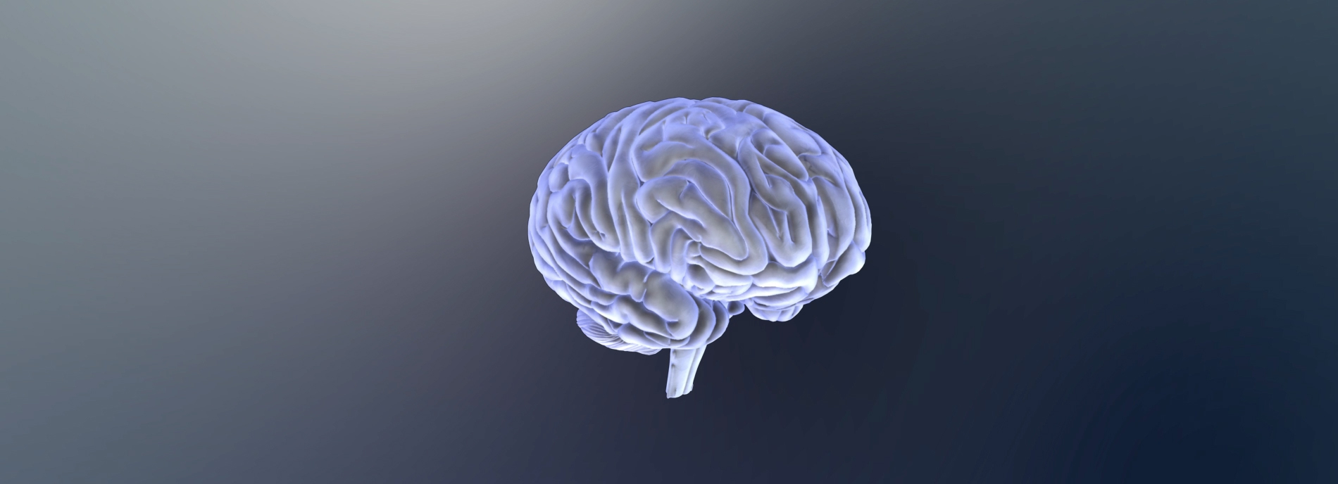 A Brain Link To Autism Scientists Find >> Autism In The Brain Region By Region Spectrum Autism Research News