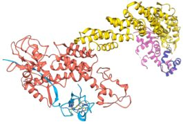 Enigmatic Chemical Tag Is Altered In >> News Archive Spectrum Autism Research News