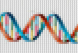 Illustration of DNA in cross stitch pattern