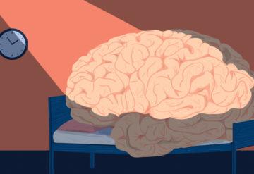 spotlight on brain in doctor's office