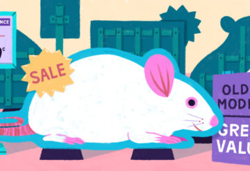illustration of mouse on sale in a city