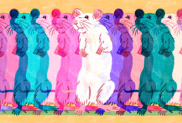 a row of colorful mice standing close together