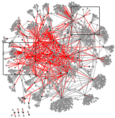 Study Pinpoints Autism Linked Protein >> Network Of Autism Linked Proteins Reveals New Interactions