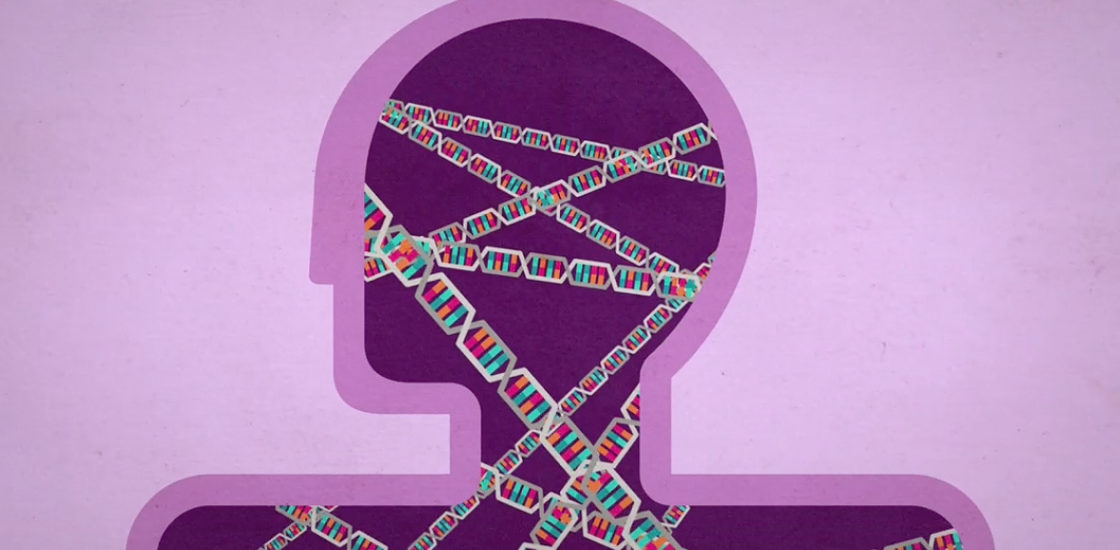 Autism Risk Genes Also Linked To Higher >> Autism Genetics Explained Spectrum Autism Research News