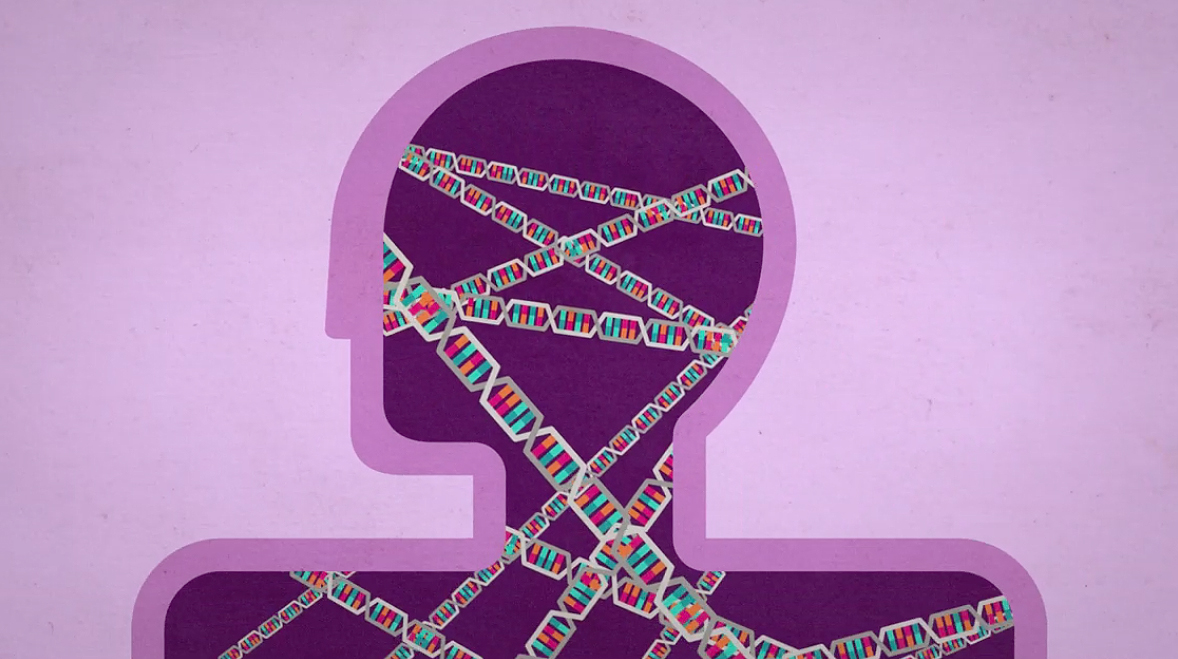 Genes Can Have Up To 80 Percent >> Autism Genetics Explained Spectrum Autism Research News