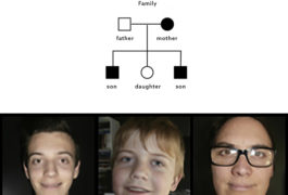 Two young sons and one mother under a pedigree chart showing family.