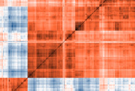 A red and blue pattern of genes.