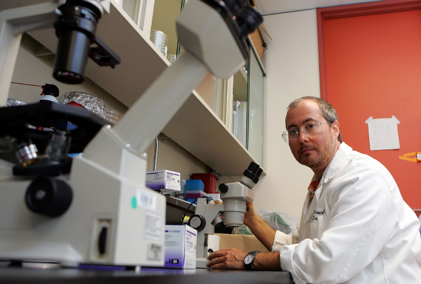 Ben Barres, a neurobiologist at Stanford University's Medical Center, poses for a portrait in his lab in the university's campus in Stanford, Calif., Tuesday, July 11, 2006.