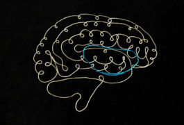 brain made of thread shows OCD loop in colored thread