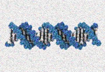 Image of DNA made up of hundreds of tiny images in a mosaic effect.