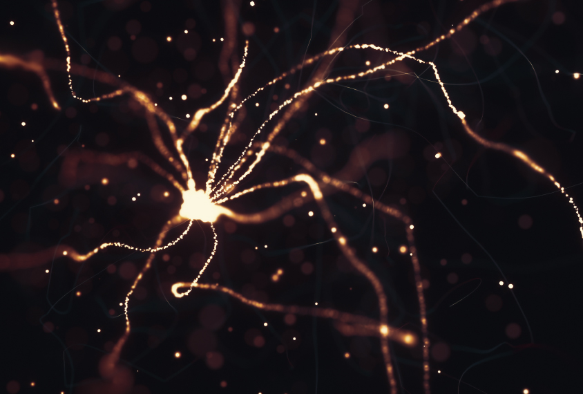 Neurons firing and lighting up