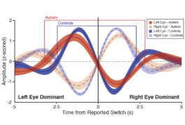 graphic shows eye movement patterns
