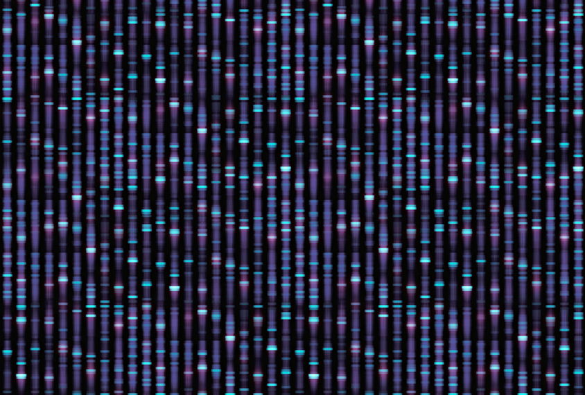 Large genome sequence in blues and purple