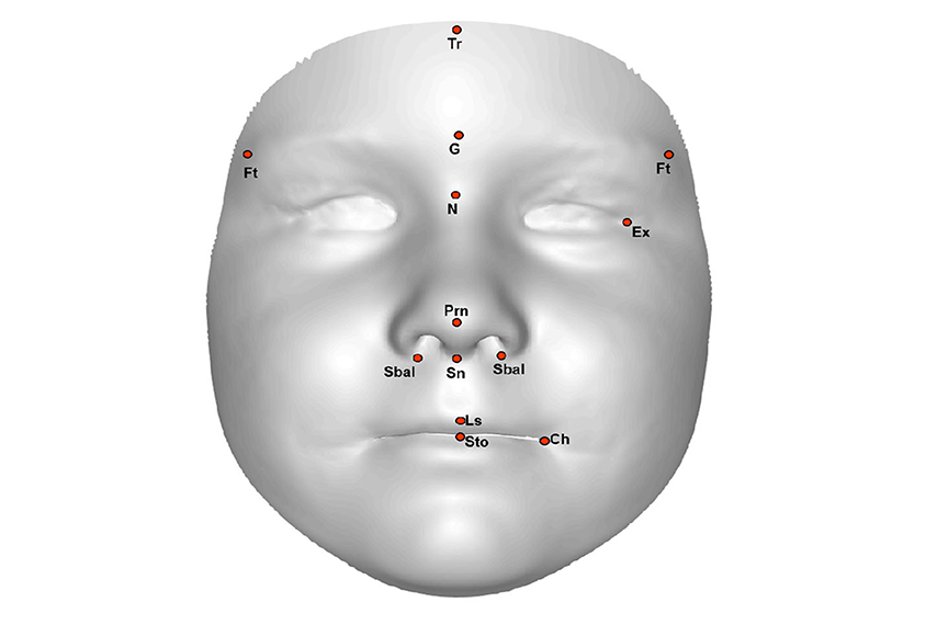 3d孩子的面孔的图象与坐标的测量在特征之间的距离。