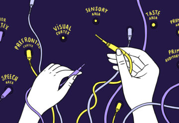 Illustration showing two hands plugging cables into different areas of the brain, eg. prefrontal cortex, motor cortex, etc.
