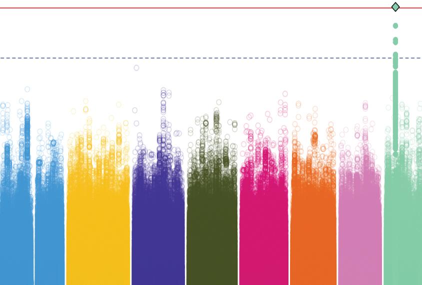 显示在染色体的五颜六色的图表变形。