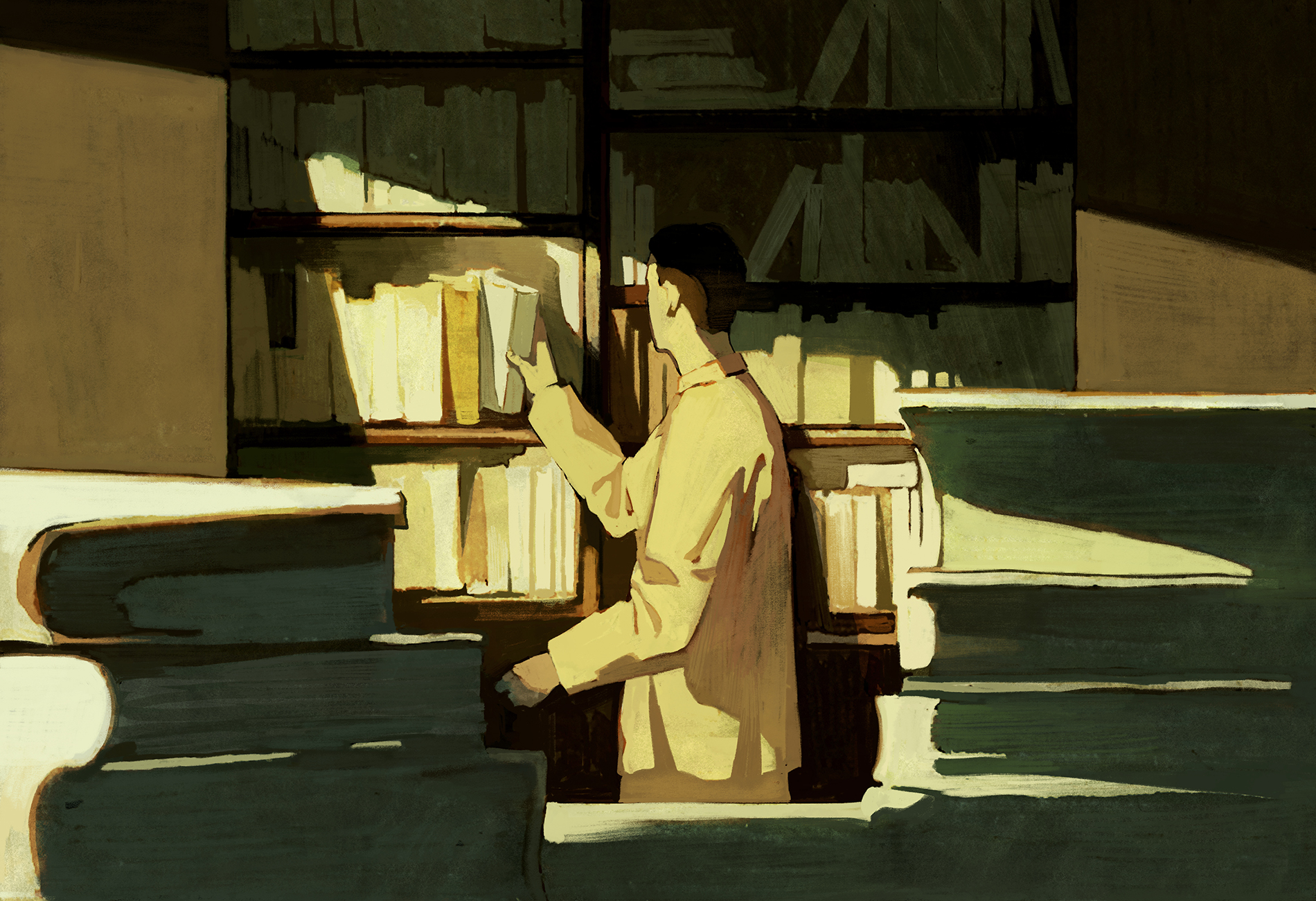 In this illustration, a man is shelving books in a peaceful library, standing in sunlight.