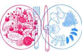 该图显示了两块食物,一个充满各种食物的食物,另一个食物,另一个食物,少量以特定方式排列。