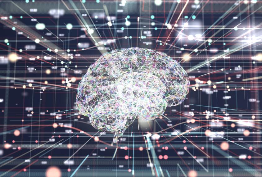 神经科学全球连接体学会2021年