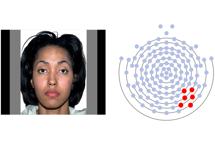 Face stimuli displaying neutral emotions and EEG electrode recording sites.