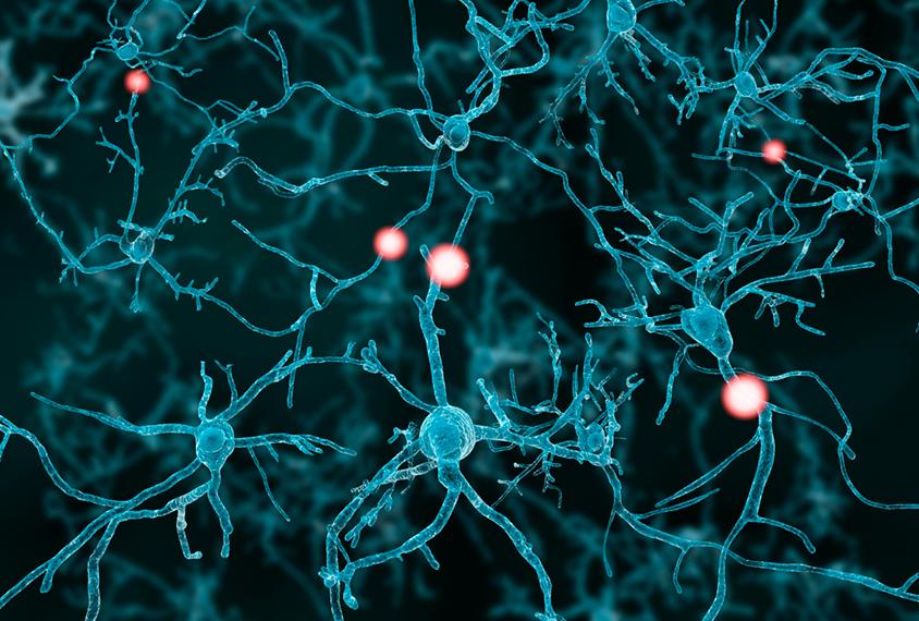 神经元放电的图解。
