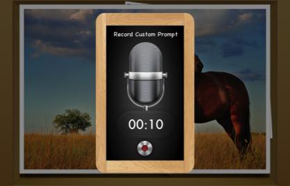 Record custom word prompts