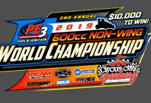 Non-Wing World Championship Logo