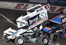 ELDORA NOTES: Shark Duo