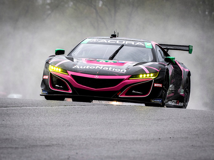 Meyer Shank Racing claimed the 2019 GT Daytona title with the Acura NSX GT3. (Brian Cleary/bcpix.com Photo)