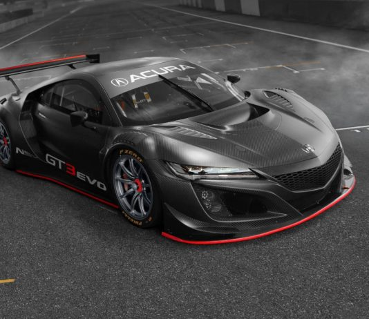 Magnus Racing has teamed with Archangel Motorsports for the upcoming IMSA season.