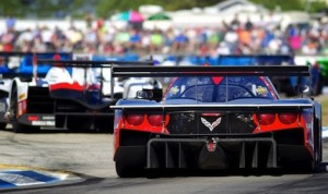 The TUDOR Championship heads to the Toyota Grand Prix of Long Beach this weekend. (John Dagys photo)