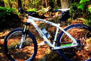 Carbon 29er Hardtail