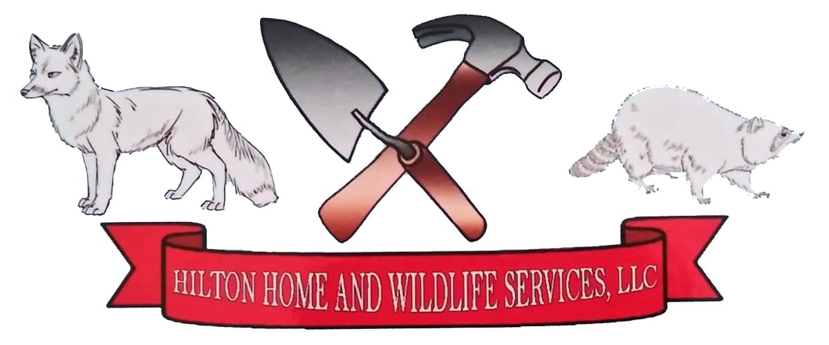 Hilton Home And Wildlife Services