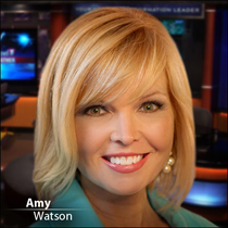 Amy Watson, Reporter/Anchor, News Channel 5 Network Lp