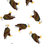 Wood Badge Eagles