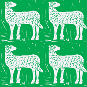 Field of White Sheep #1
