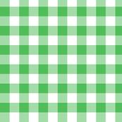 "5/8"" Spearmint green gingham check"