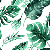 Watercolor tropic jungle seamless summer pattern background with tropical palm monstera leaves
