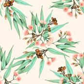 Gumnuts & Eucalyptus Peachy